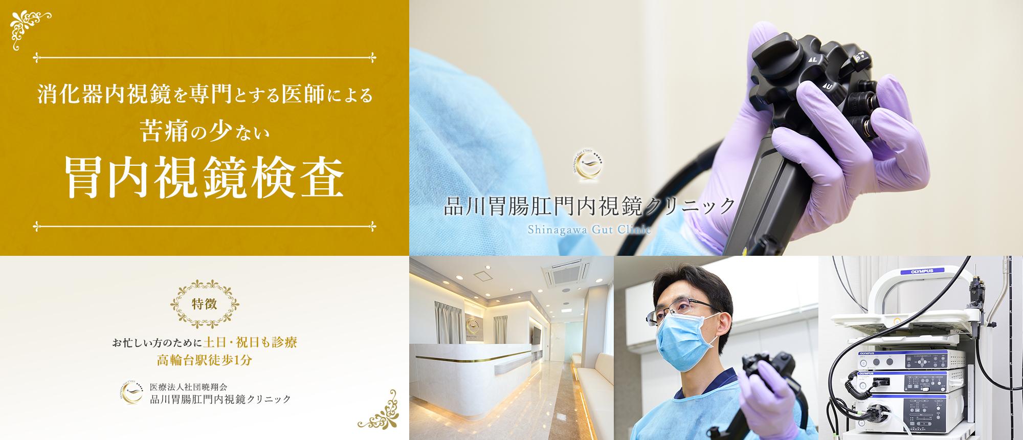 消化器内視鏡を専門とする医師による苦痛の少ない胃内視鏡検査